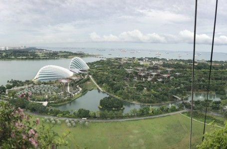 Gardens By The Bay by Gavin Rick